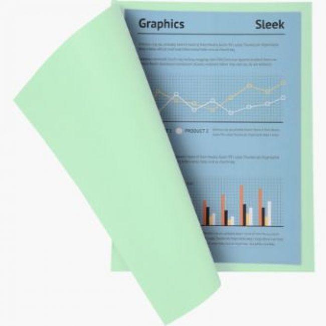 Subcarpeta cartolina verd A4 250gr Exacompta -p 100-