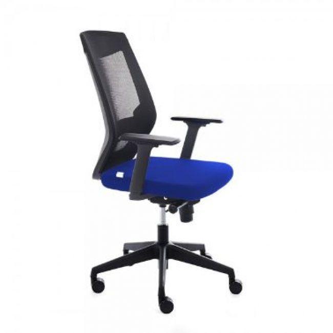 Cadira rodes amb braços blau Rocada RD-908/3