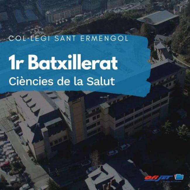 COL·LEGI SANT ERMENGOL - 1 BATXILLERAT CIÈNCIES DE LA SALUT